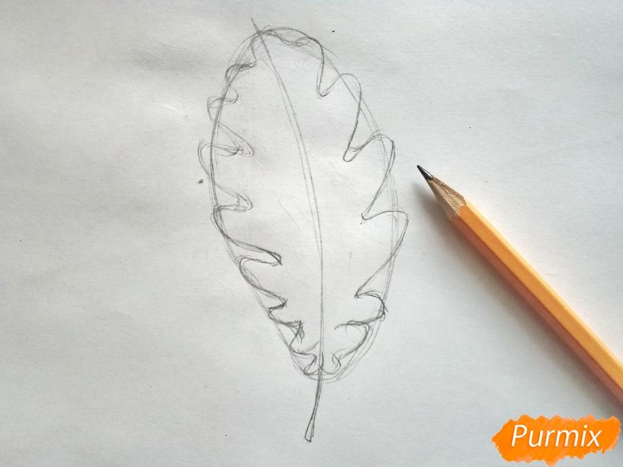 Рисуем дубовый лист карандашами - шаг 2