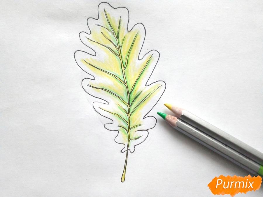 Рисуем дубовый лист карандашами - шаг 5