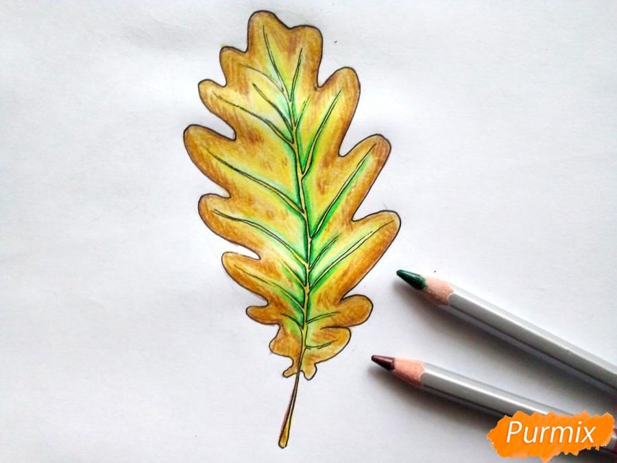 Рисуем дубовый лист карандашами - шаг 6