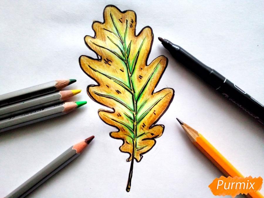 Рисуем дубовый лист карандашами - шаг 8