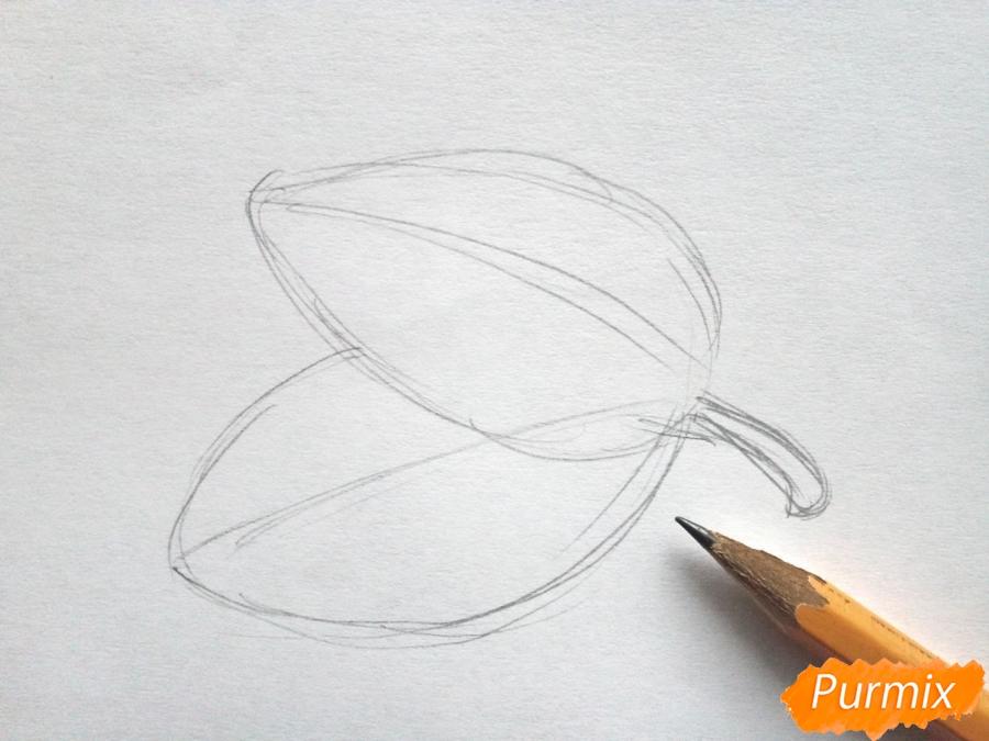 Рисуем дубовый лист с желудем - шаг 1