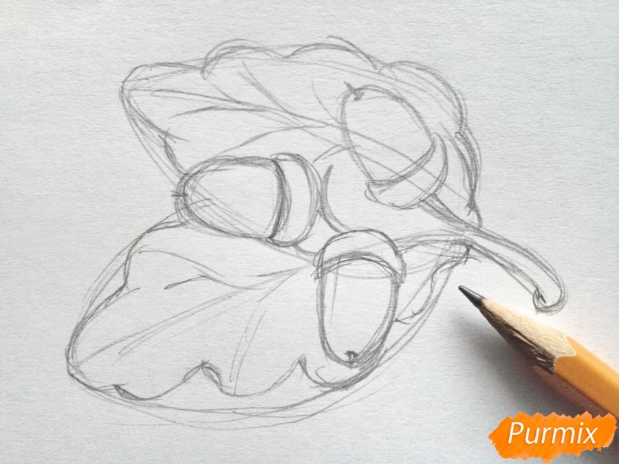 Рисуем дубовый лист с желудем - шаг 3