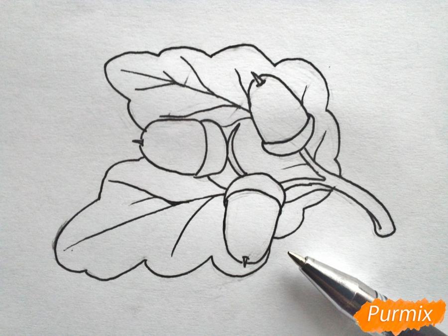 Рисуем дубовый лист с желудем - шаг 4