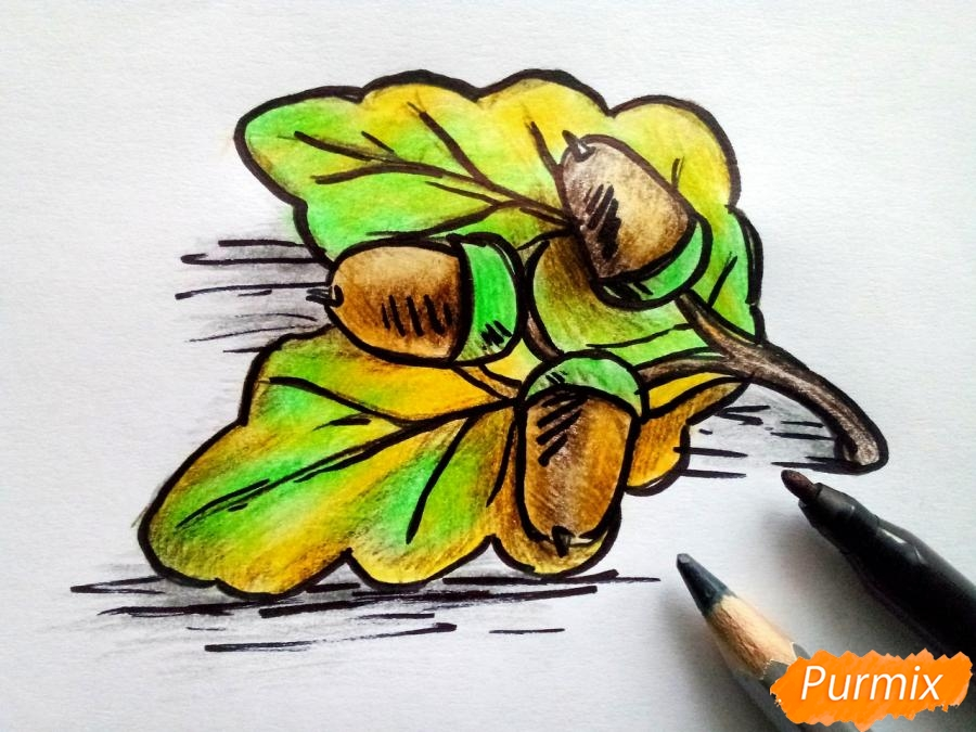 Рисуем дубовый лист с желудем - шаг 7