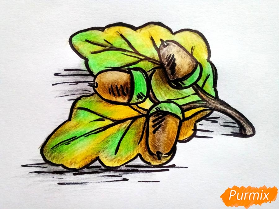 Рисуем дубовый лист с желудем - шаг 8