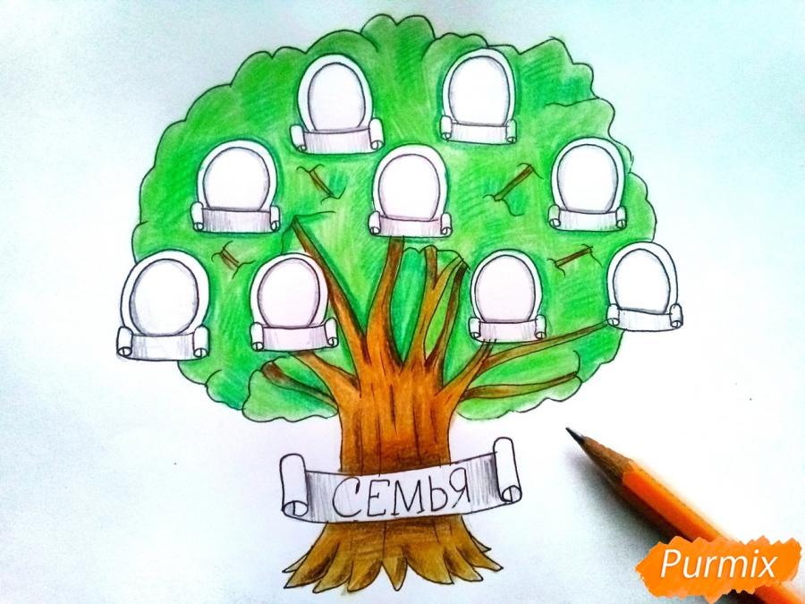 Рисуем генеалогическое дерево семьи карандашами - шаг 6