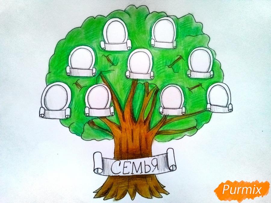 Рисуем генеалогическое дерево семьи карандашами - шаг 7