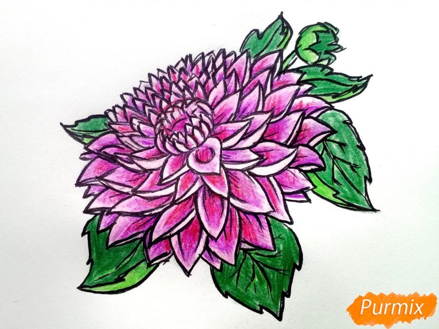Рисуем цветок георгин - шаг 10