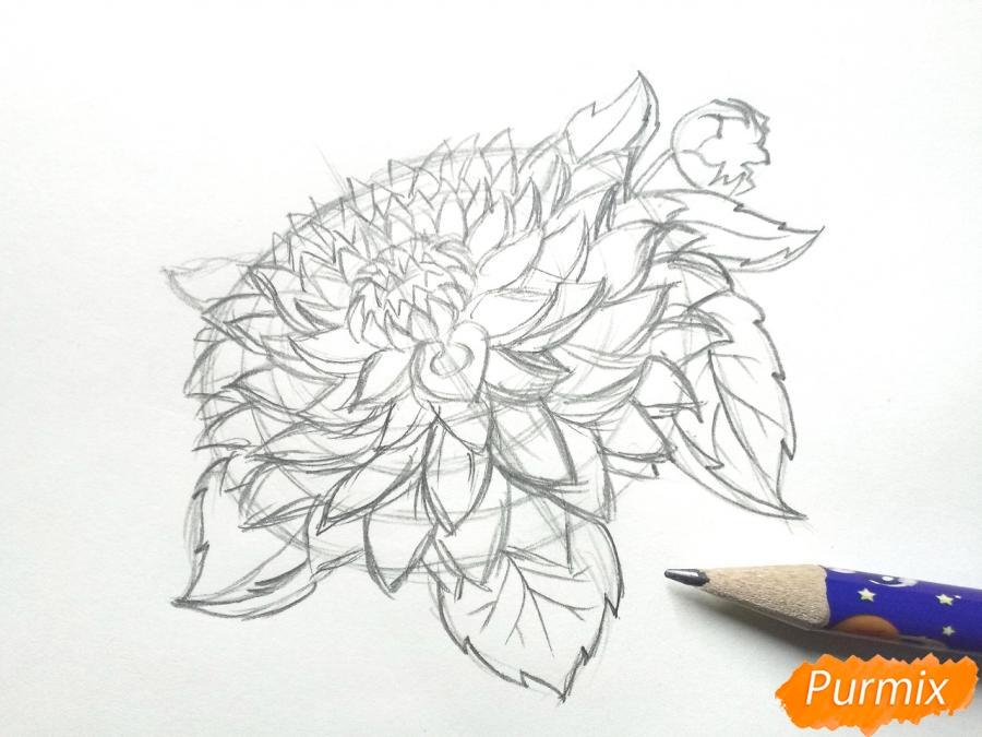 Рисуем цветок георгин - шаг 4