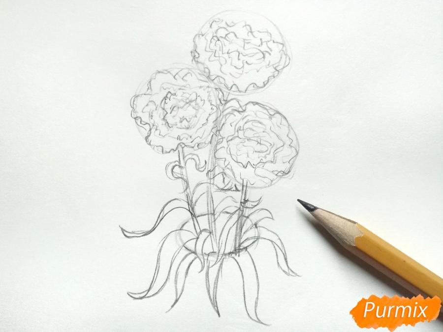Рисуем букет гвоздик в вазе - шаг 4