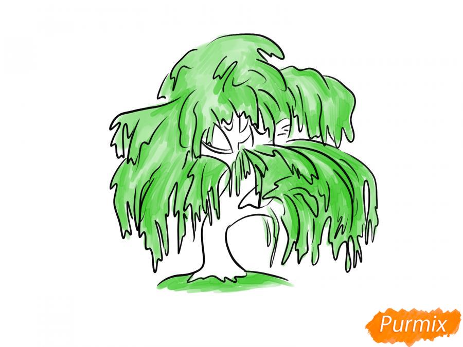 Рисуем и раскрасить зелёную иву - шаг 5