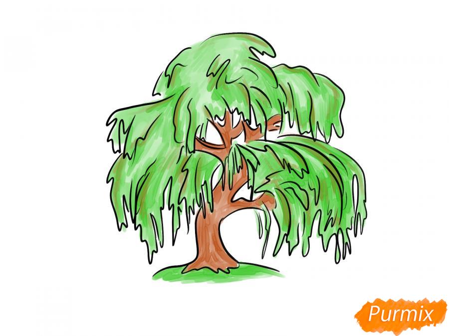 Рисуем и раскрасить зелёную иву - шаг 6