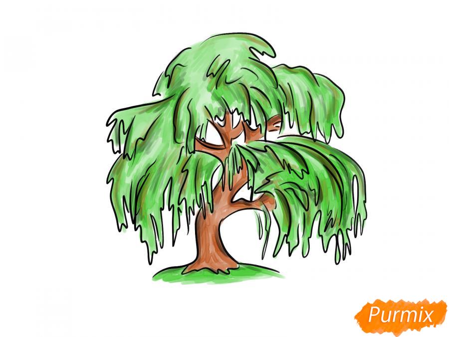 Рисуем и раскрасить зелёную иву - шаг 7