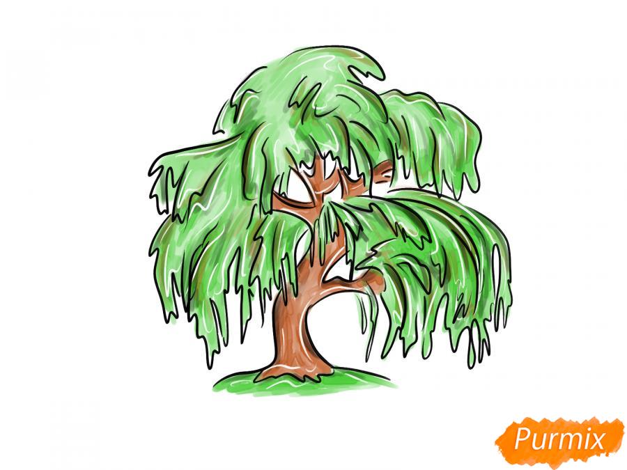 Рисуем и раскрасить зелёную иву - шаг 8