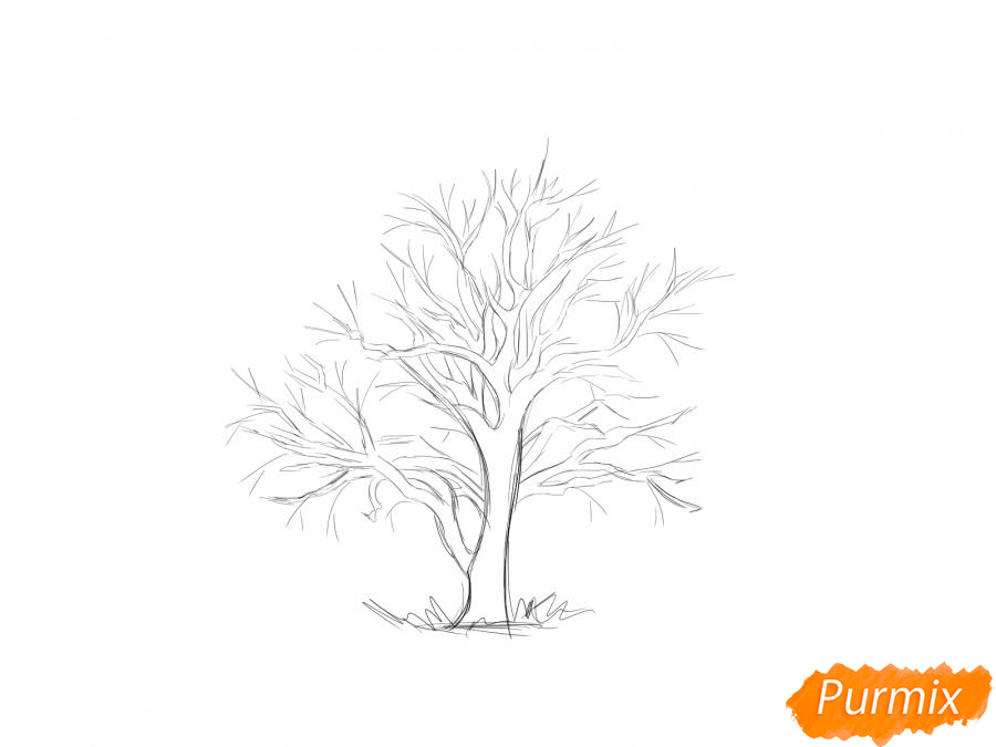 Рисуем каштан без листьев - шаг 4