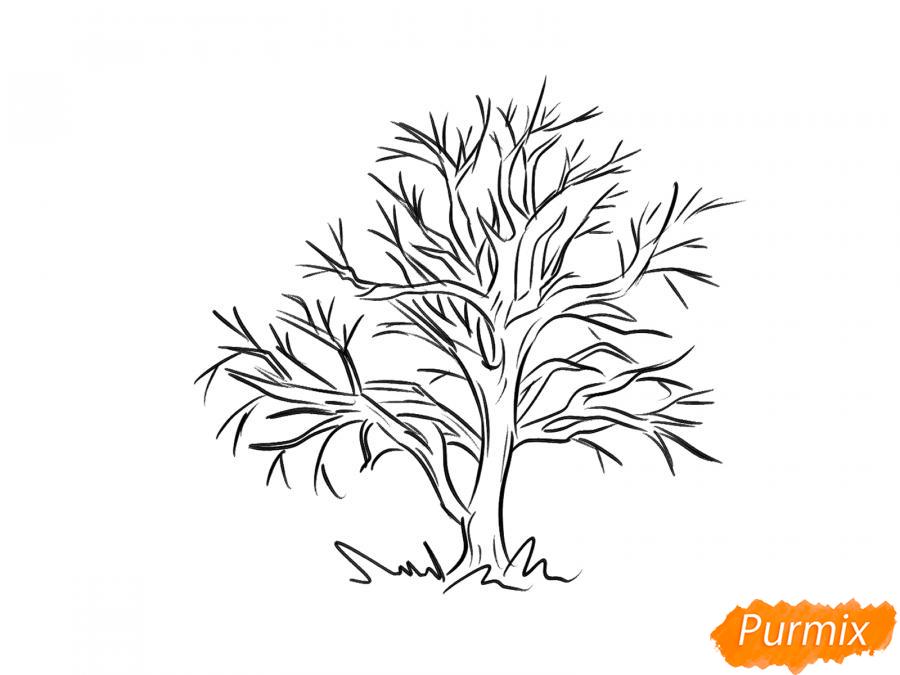 Рисуем каштан без листьев - шаг 5