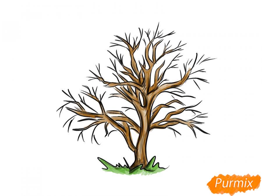 Рисуем каштан без листьев - шаг 7