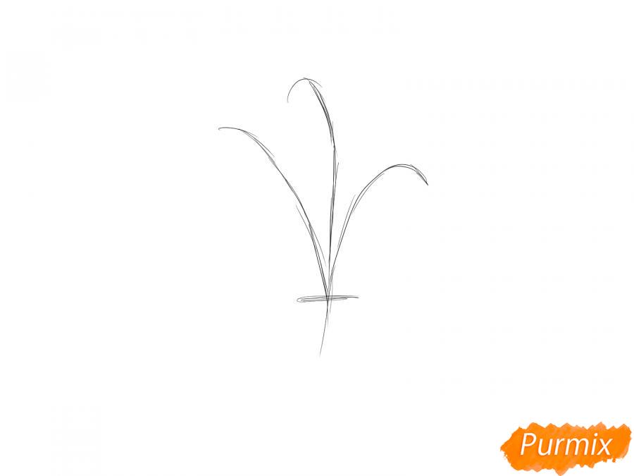 Рисуем ландыши в вазе - шаг 1