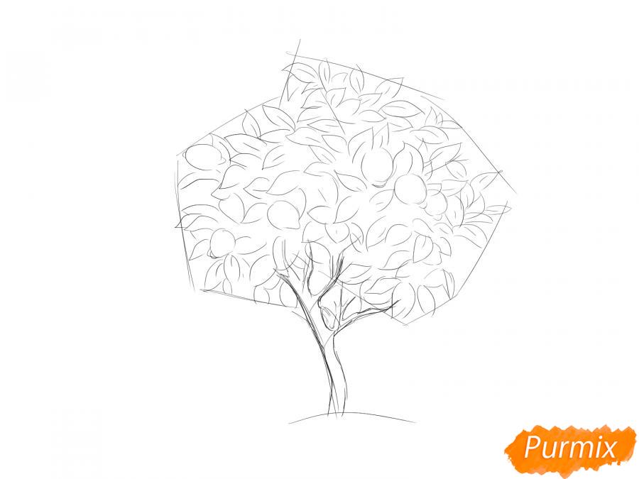 Рисуем лимонное дерево - шаг 4