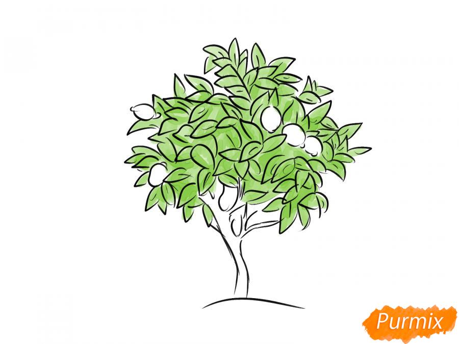 Рисуем лимонное дерево - шаг 6