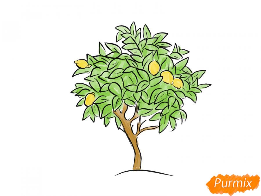 Рисуем лимонное дерево - шаг 7