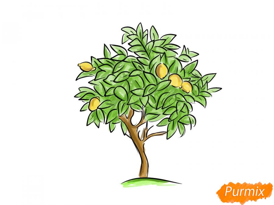 Рисуем лимонное дерево - шаг 8