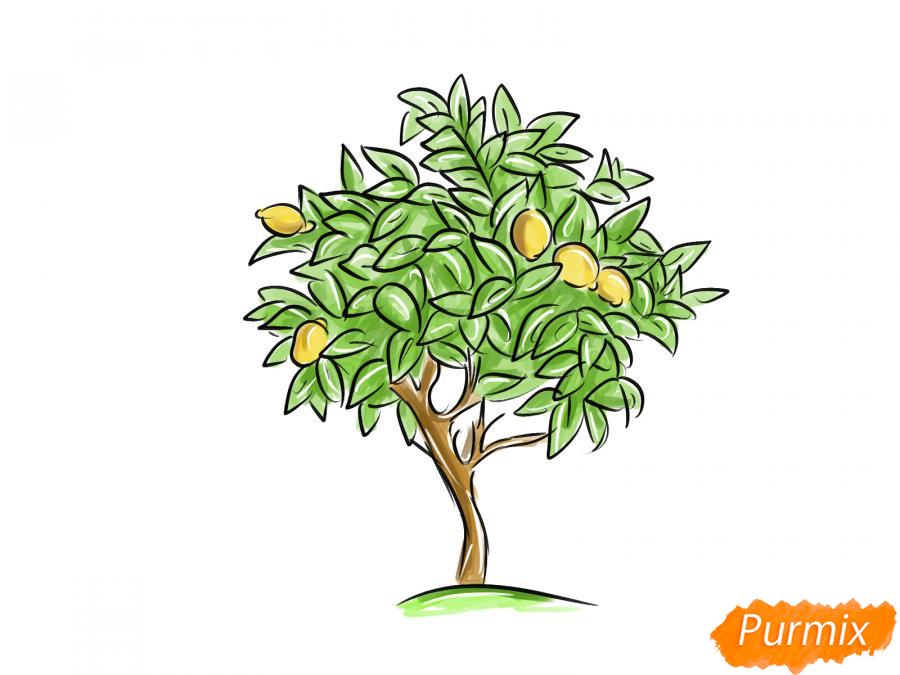 Рисуем лимонное дерево - шаг 9