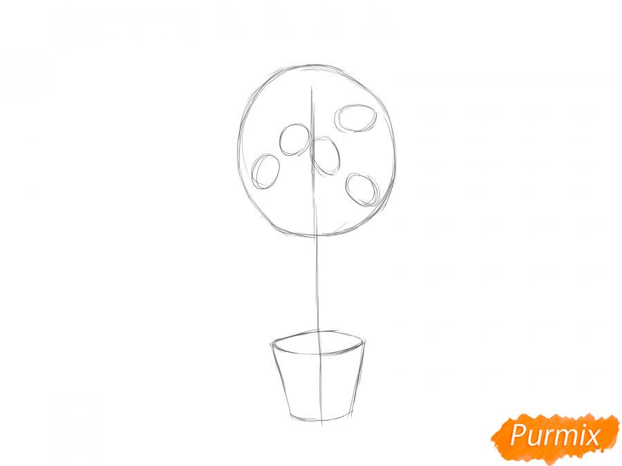 Рисуем лимонное дерево в горшке - шаг 3