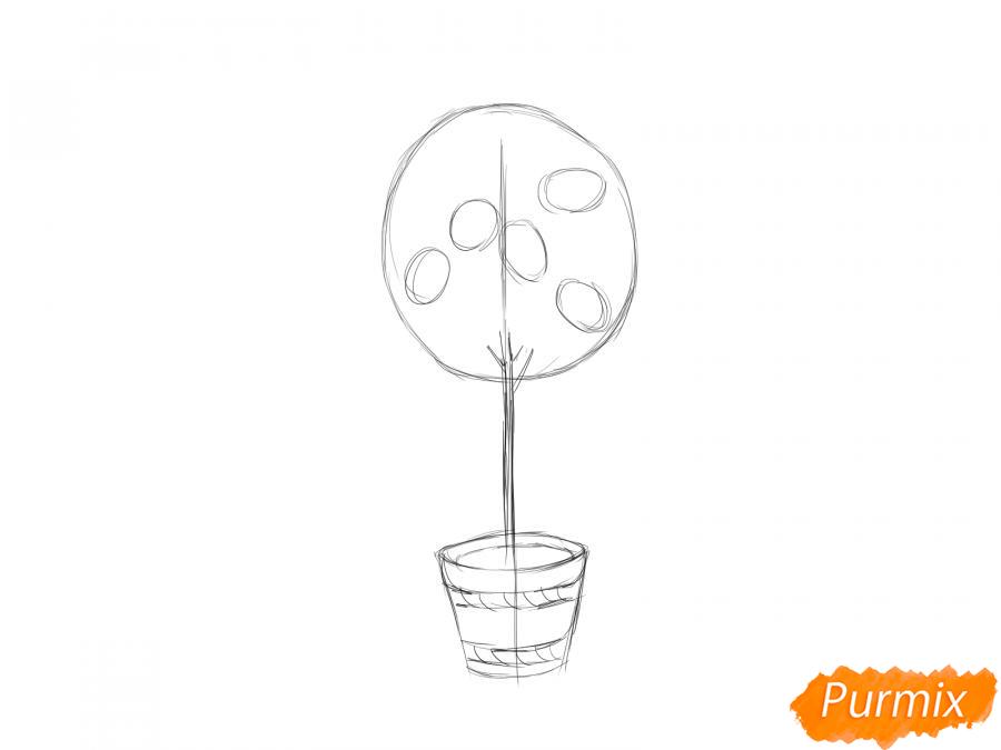Рисуем лимонное дерево в горшке - шаг 4
