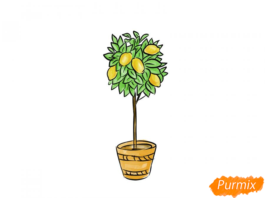 Рисуем лимонное дерево в горшке - шаг 9