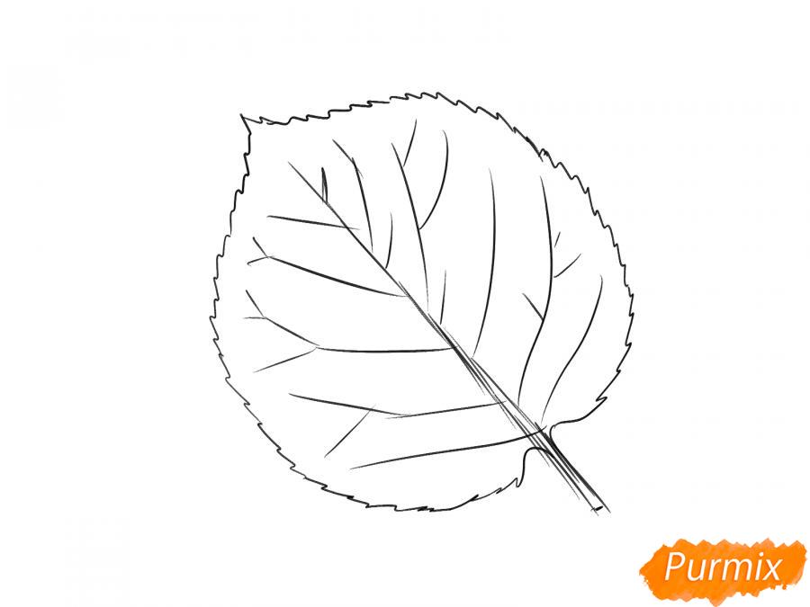 Рисуем лист абрикосы - шаг 3