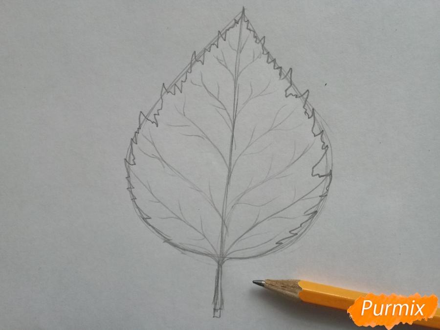 Рисуем лист березы карандашами - шаг 2