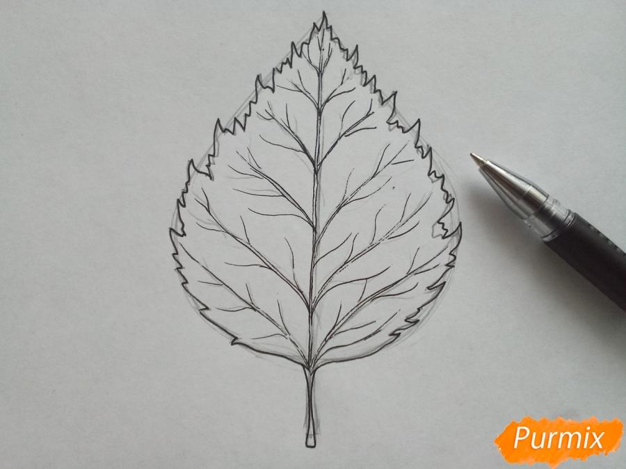 Рисуем лист березы карандашами - шаг 3