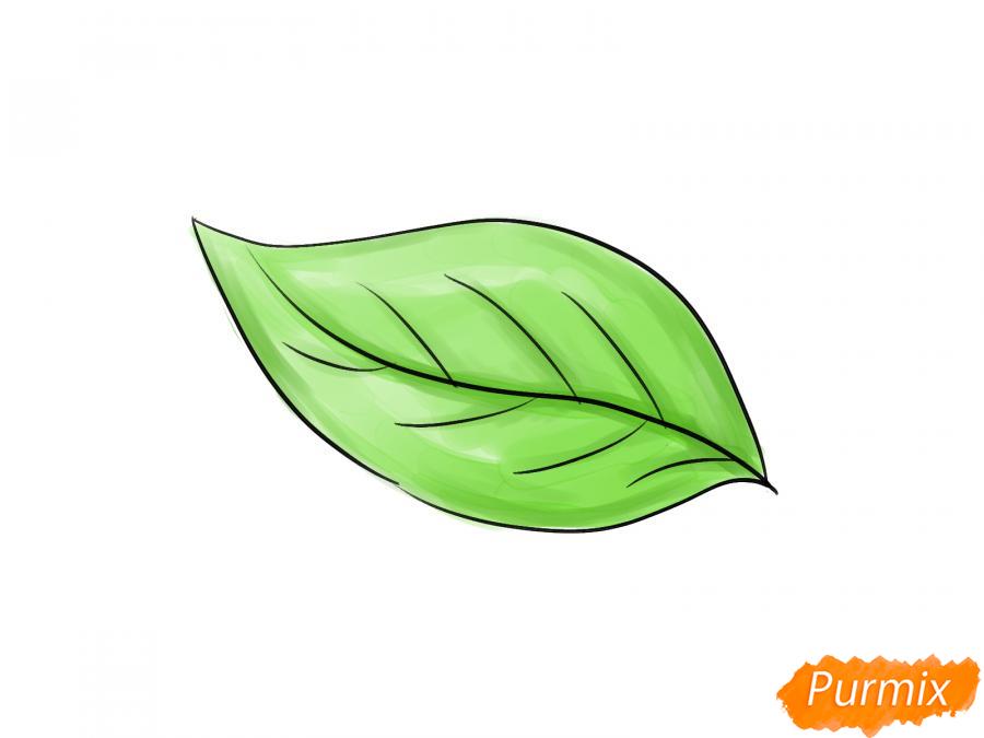 Рисуем лист груши - шаг 4