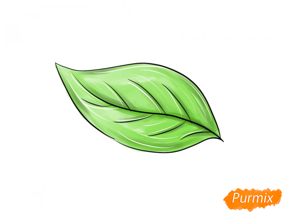 Рисуем лист груши - шаг 5