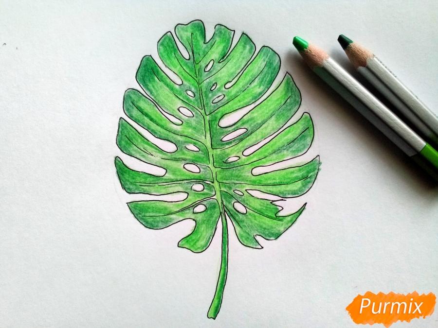 Рисуем лист пальмы карандашами - шаг 4
