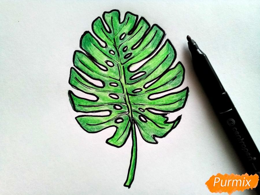 Рисуем лист пальмы карандашами - шаг 5