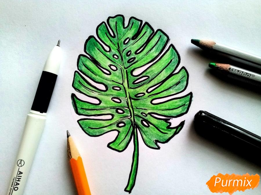 Рисуем лист пальмы карандашами - шаг 6