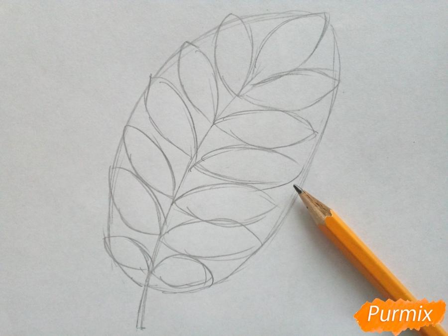 Рисуем лист рябины карандашами - шаг 2