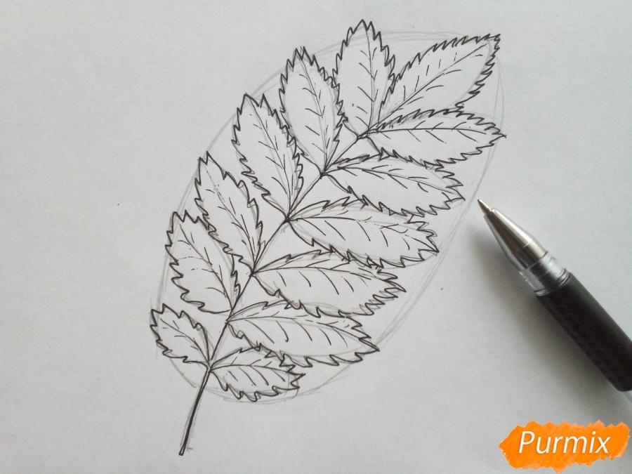 Рисуем лист рябины карандашами - шаг 3