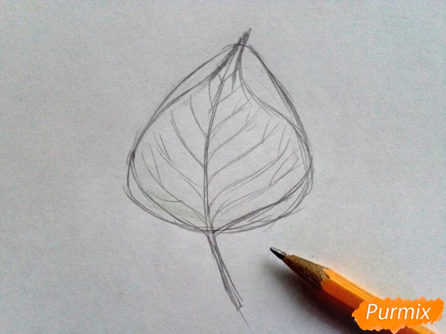 Рисуем лист тополя карандашами - шаг 2