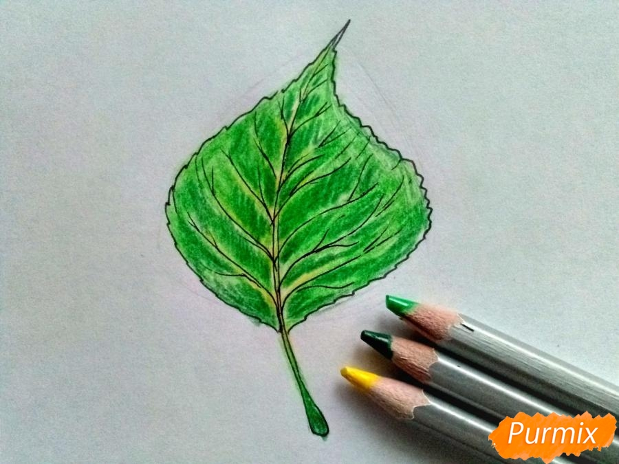 Рисуем лист тополя карандашами - шаг 5