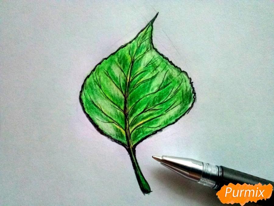 Рисуем лист тополя карандашами - шаг 6