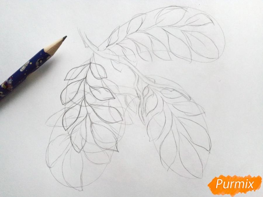 Рисуем листья рябины на ветке без ягод - шаг 2