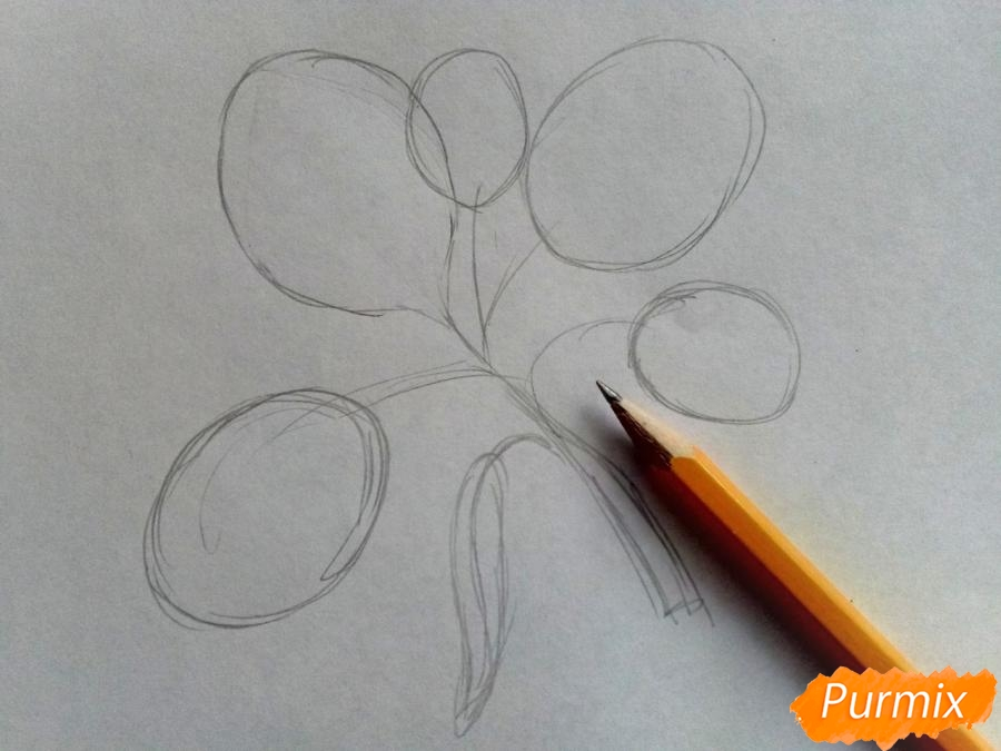 Рисуем листья тополя на ветке - шаг 1