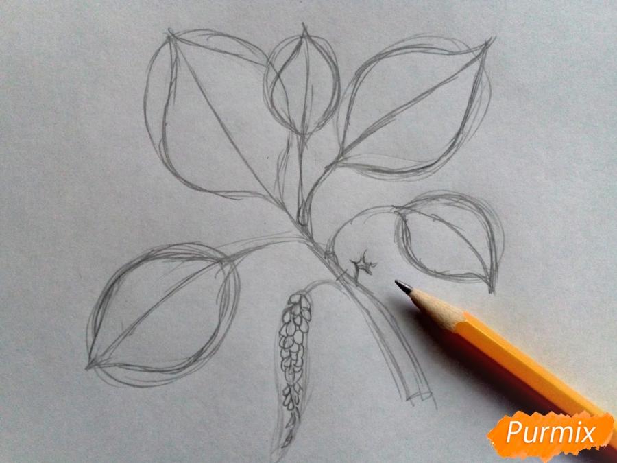 Рисуем листья тополя на ветке - шаг 2