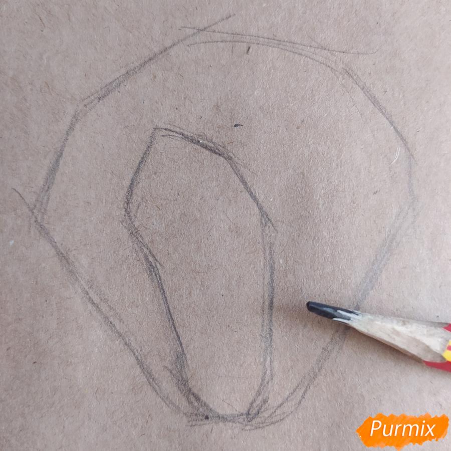 Как рисовать Магнолию карандашами - шаг 2