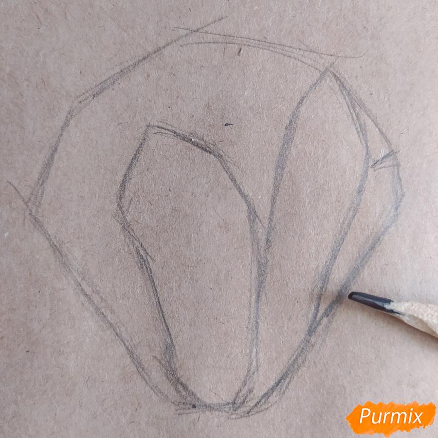 Как рисовать Магнолию карандашами - шаг 3
