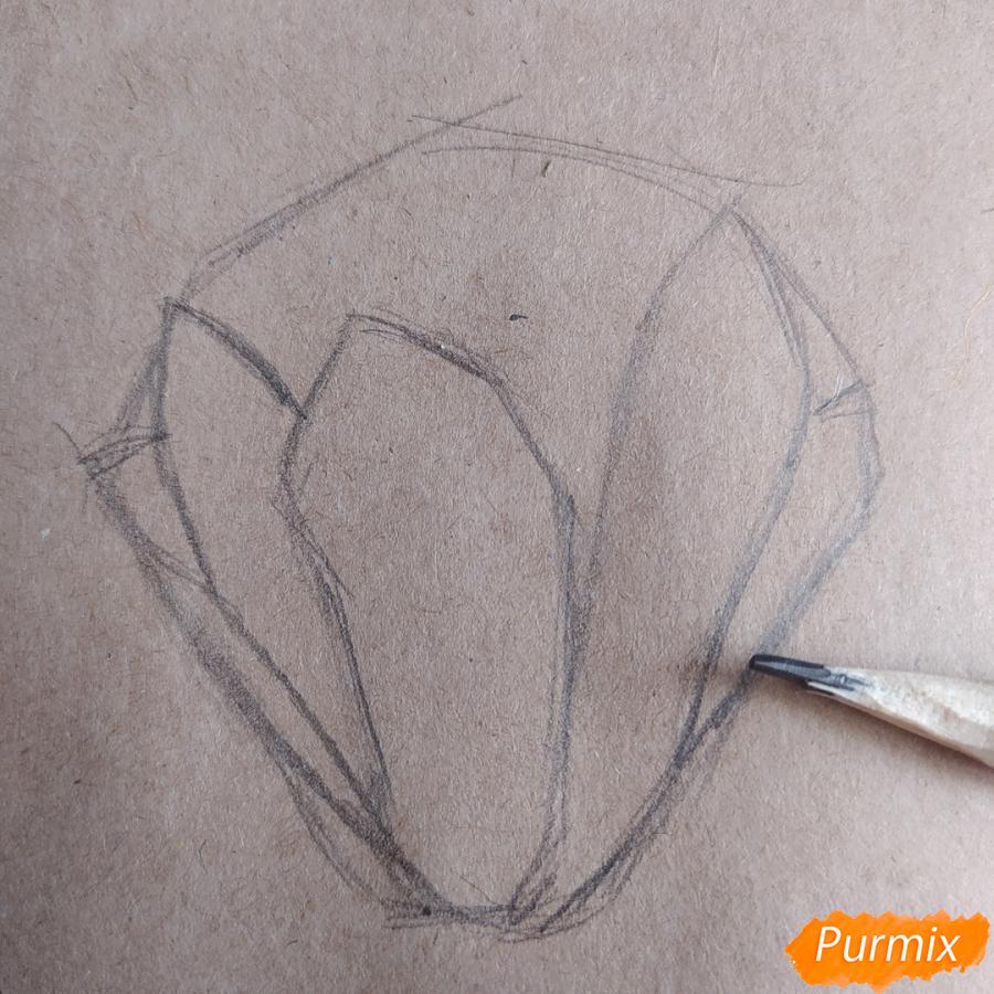 Как рисовать Магнолию карандашами - шаг 4