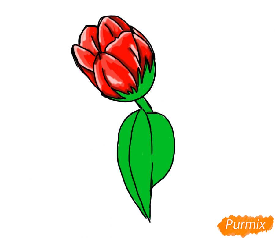 Рисуем один простой тюльпан - шаг 7